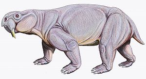 Dinodontosaurus Wikipedia