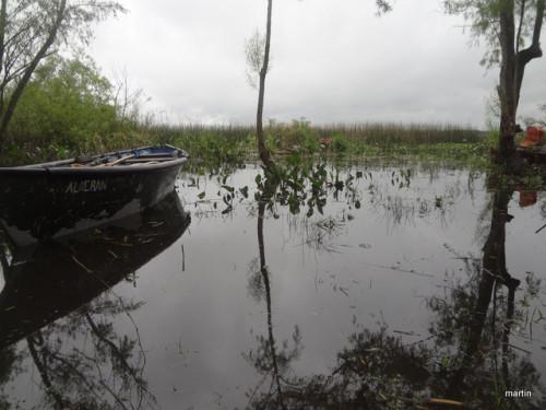 Sumpflandschaft am Rio Negro