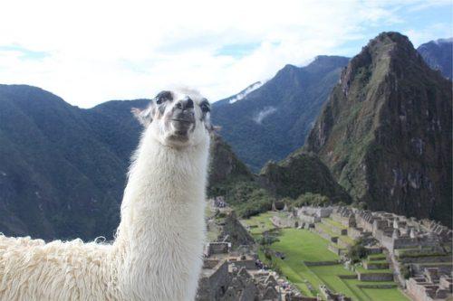 Machu Picchu Sparpreis